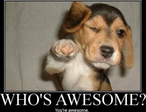 awesomepuppy