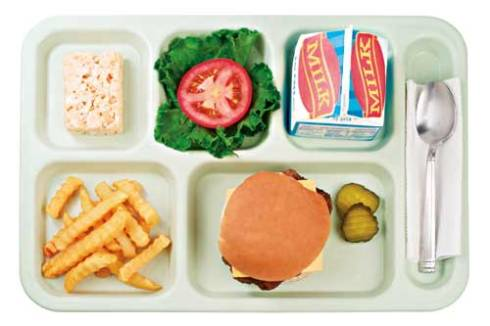 http://naturalvitalitykids.com/2010/09/the-school-lunch-revolution/