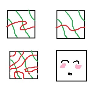 All three toruses have the same red and green homotopy classes of curves.  I just couldn't make a picture w/out a cute blushing square.