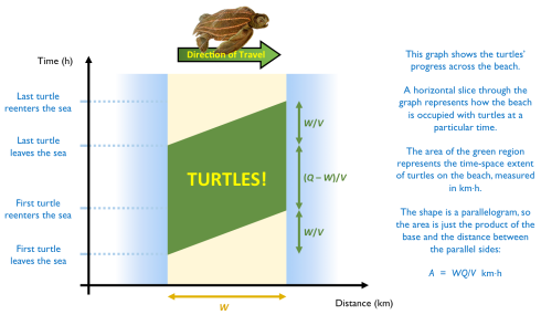 turtle_time_space_diagram
